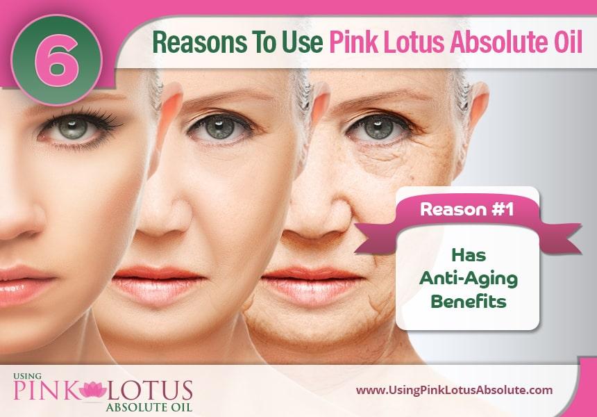 pink lotus absolute essential oil uses